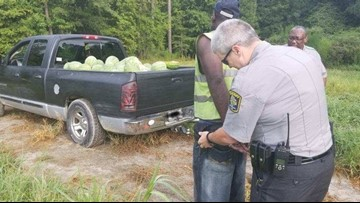 NC Watermelon Thief Nabbed After Getting Stuck In Field: Deputies