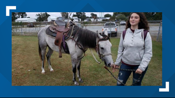 Student Rides Horse To School After She Missed The Bus