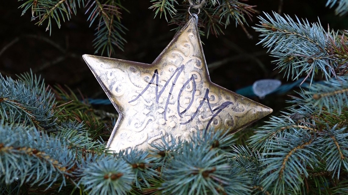 Indiana woman honors lost loved ones with community Christmas tree