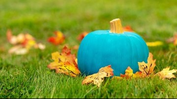 This 'Teal Pumpkin Map' tells you where to find food allergy safe homes for Halloween