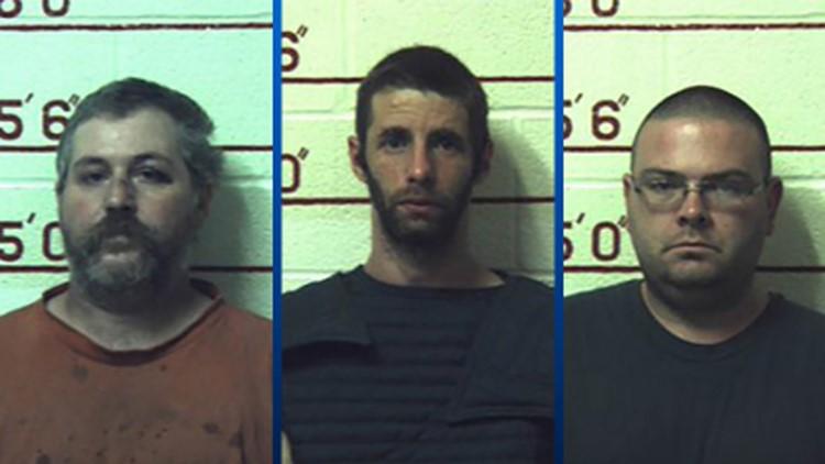Three men get prison for having sex with 12 animals